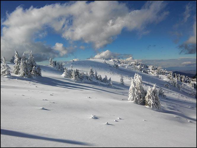 peisaj in ciucas iarna