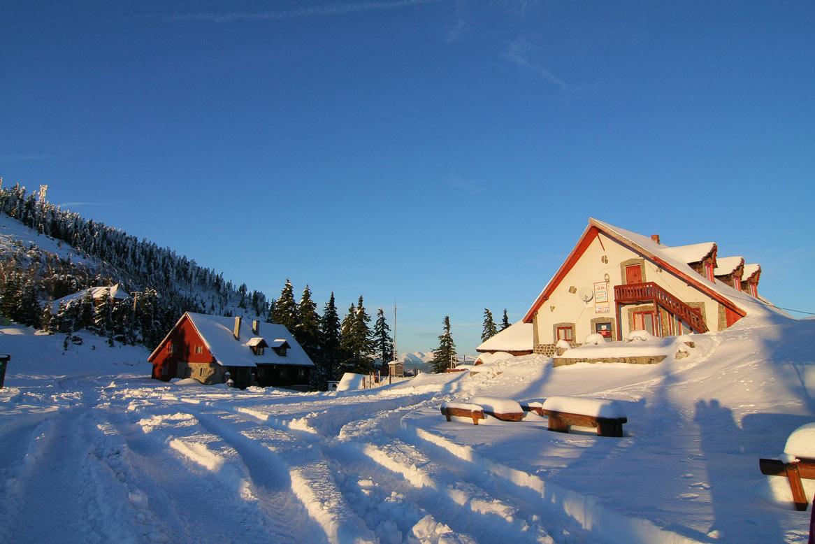 cabana cozia iarna