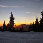 Prin zăpada Coziei