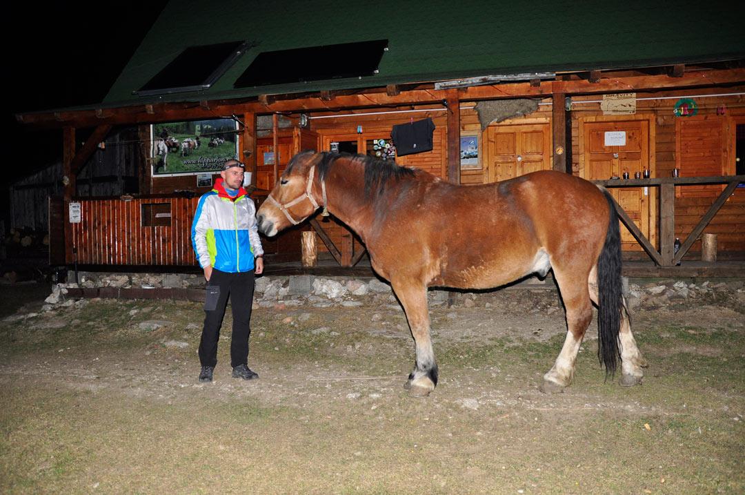 calul de la cabana
