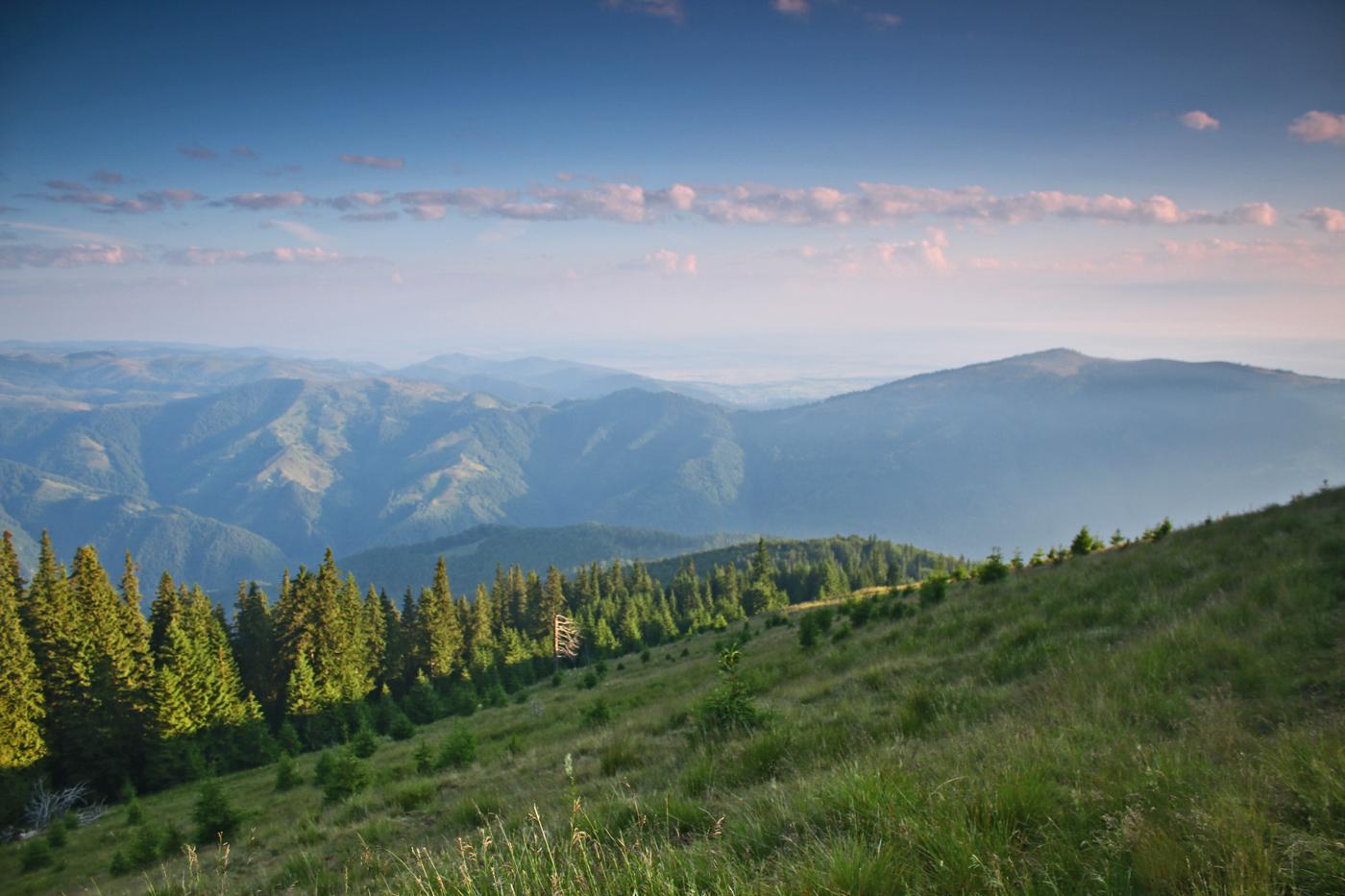 Vedere spre Cindrel din munții Lotrului