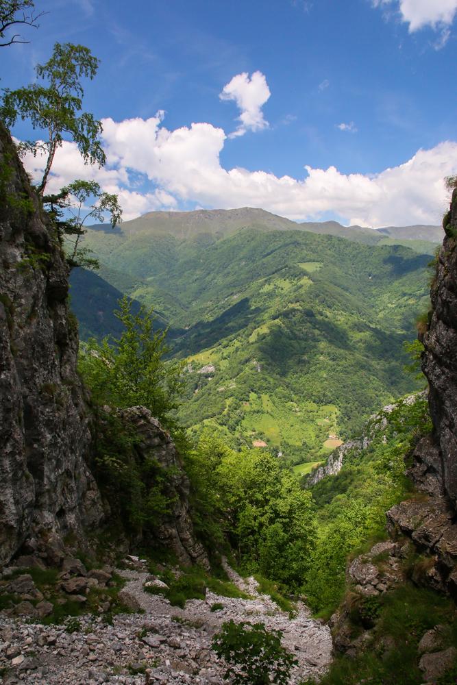 Vedere spre culmea Vlașcu dinspre Fueroaga Tâmnei