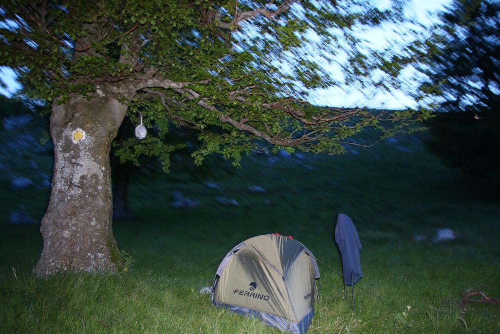 Noaptea în Poiana Ploștinioarele