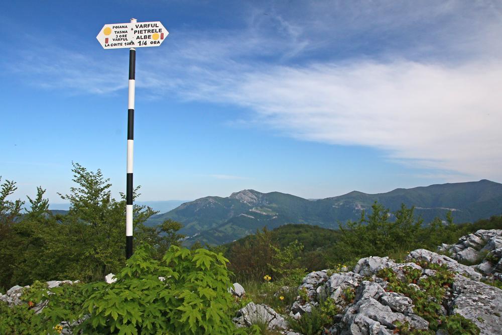 Indicator în munții Mehedințiului
