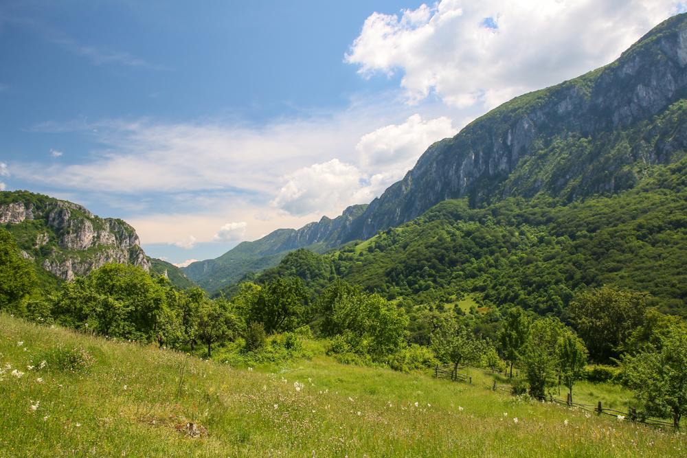 Munții Mehedinți văzuți din Cernei