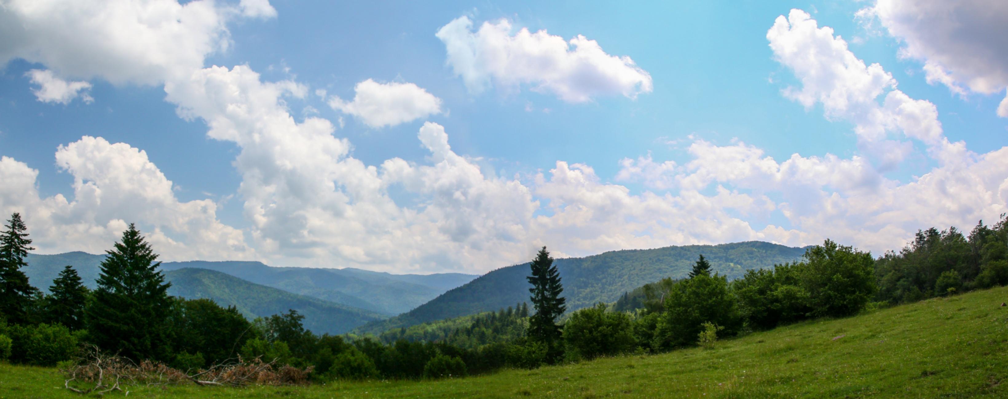 Vedere în munții Brețcu-Oituz
