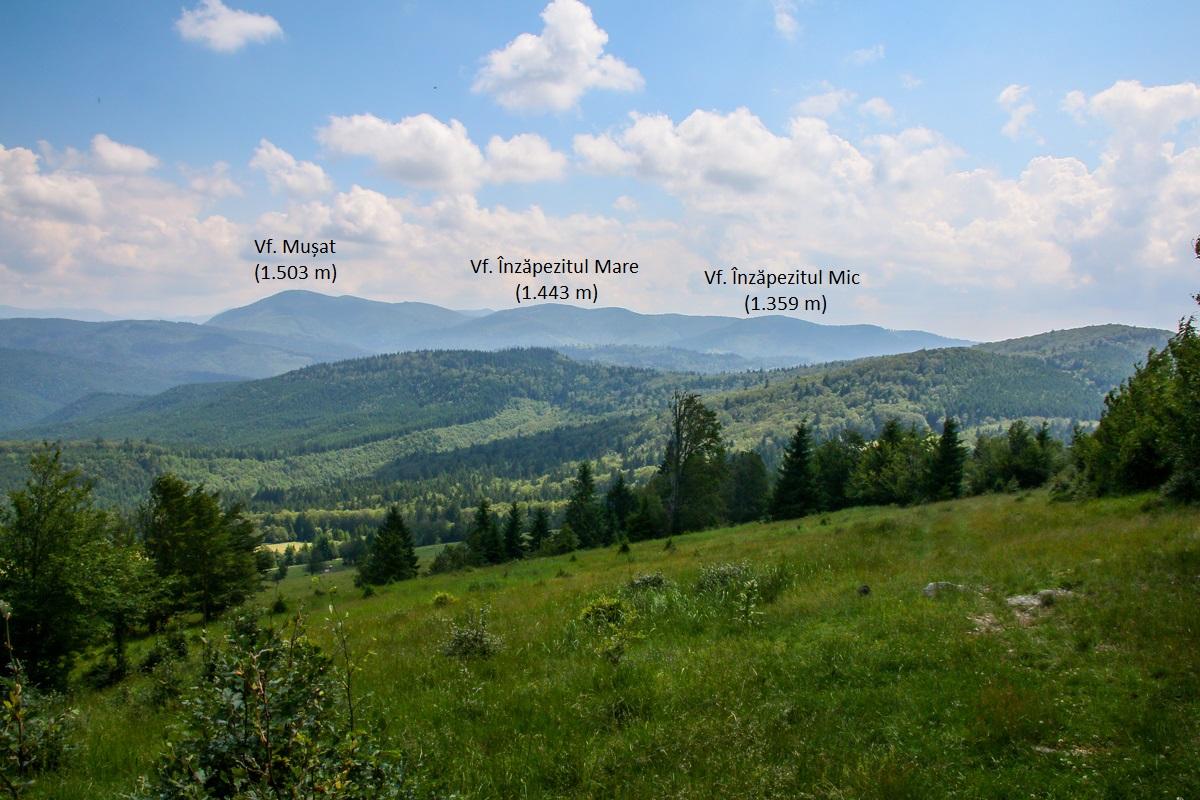Vârfuri Munții Brețcu