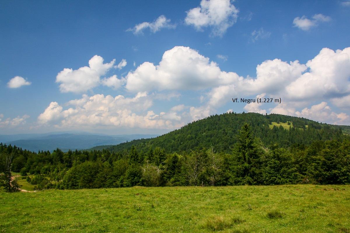 Vârf în munții Brețcu-Oituz