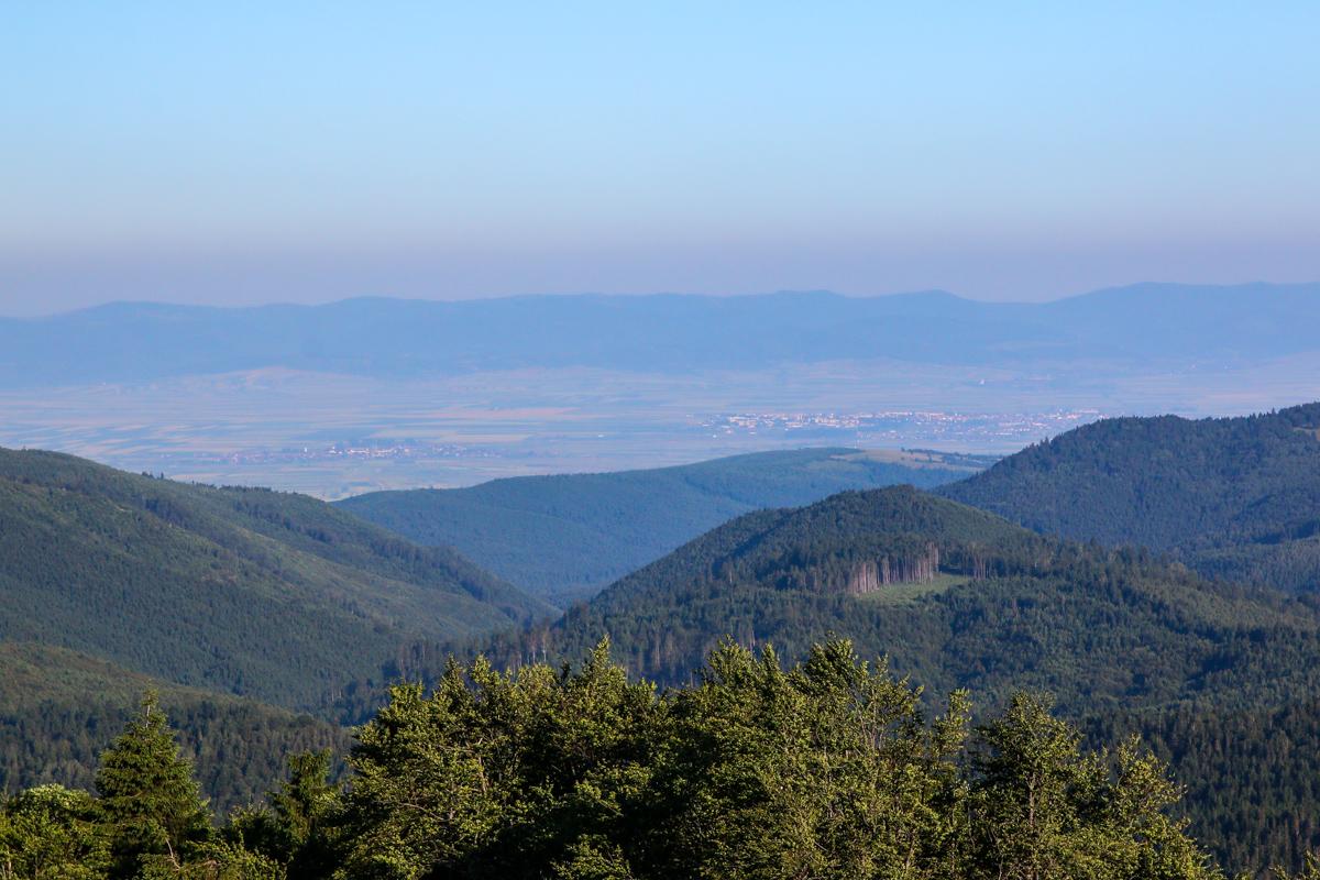 Vedere spre Târgu Secuiesc din creasta Brețcului