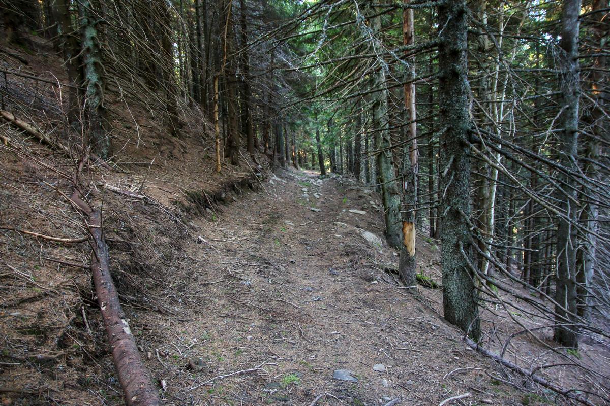Brâul vârfului Baba - Brețcu