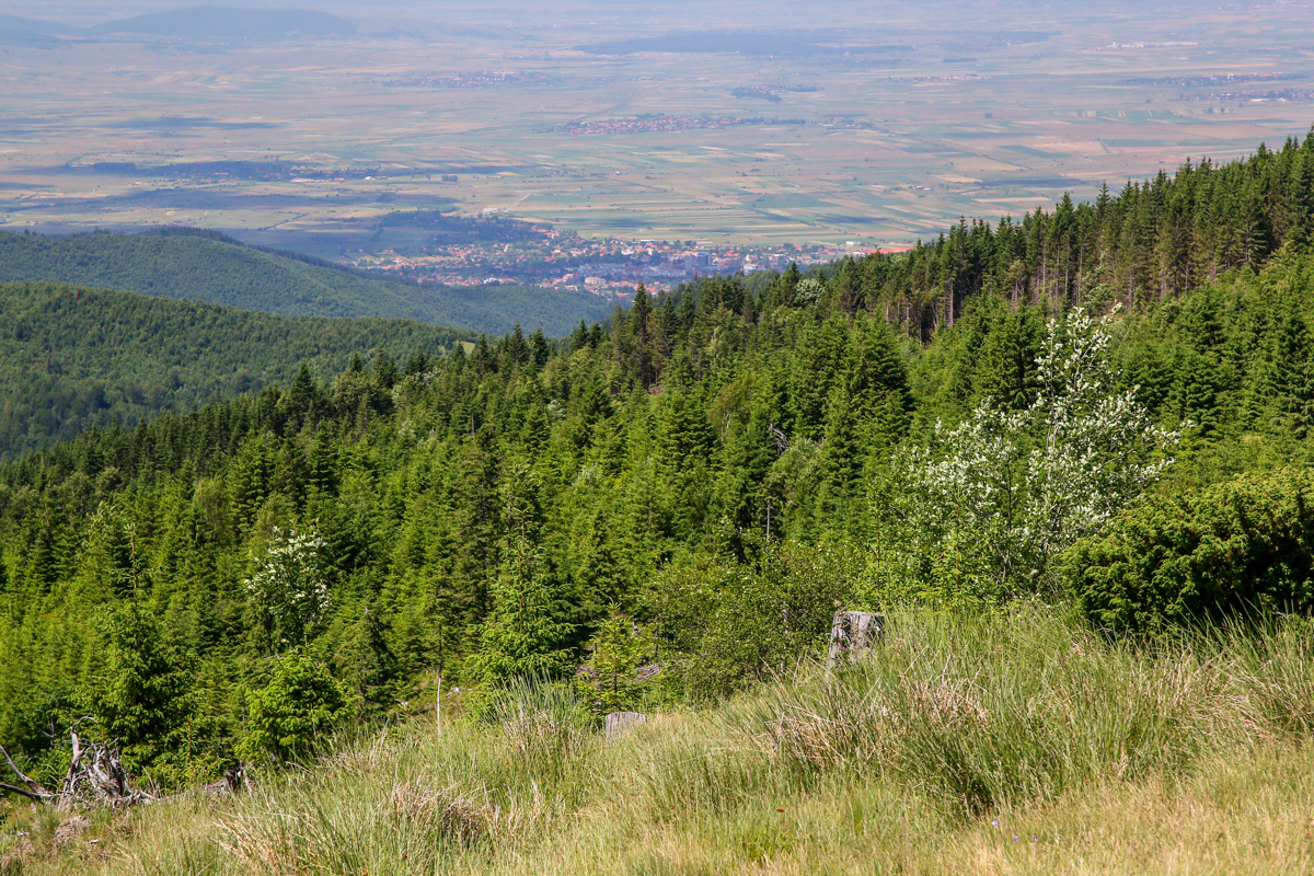 Covasna văzută din munții Brețcului