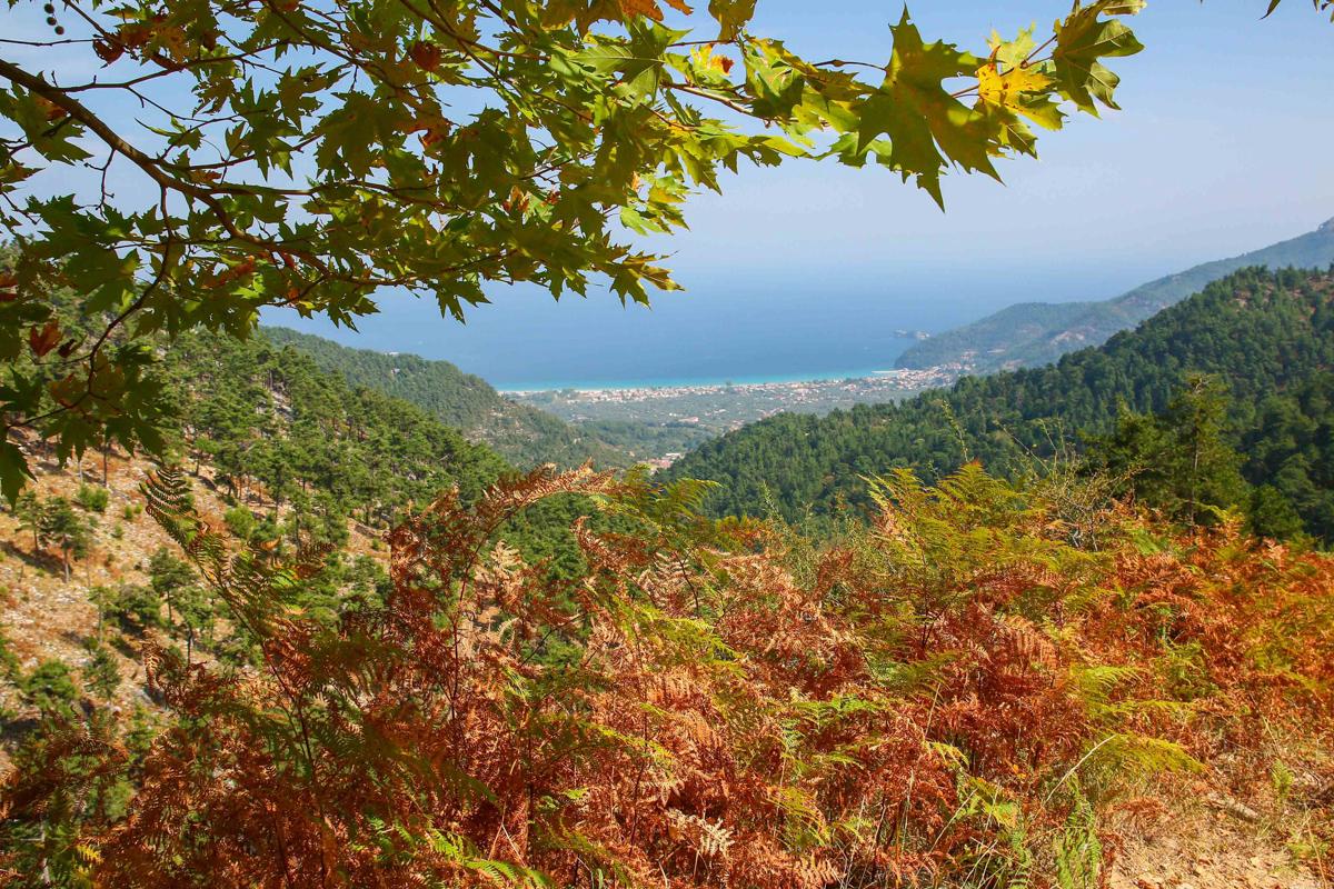 De pe munte în Thassos