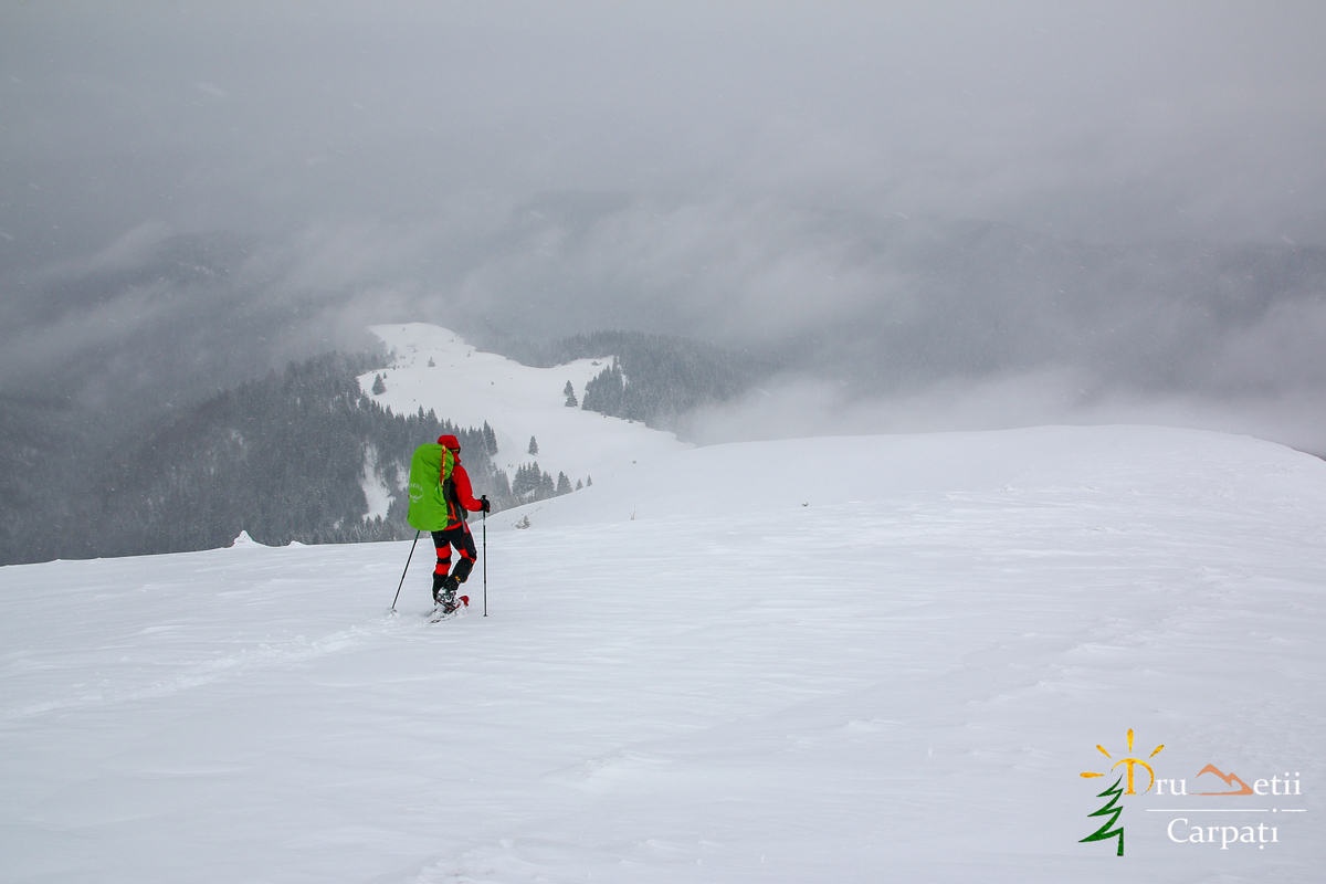 La război în munții Neamțului @ Munții Neamțului