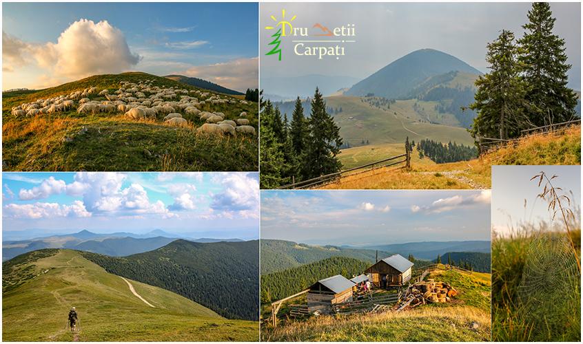 Munții Suhardului - visul unei nopți de vară @ Munții Suhardului
