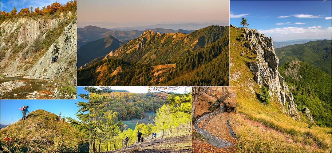 Into the wild (munții Vrancei) @ Munții Vrancei